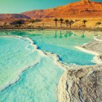 The Dead Sea in Israel, with palm treets and golden hills in the background