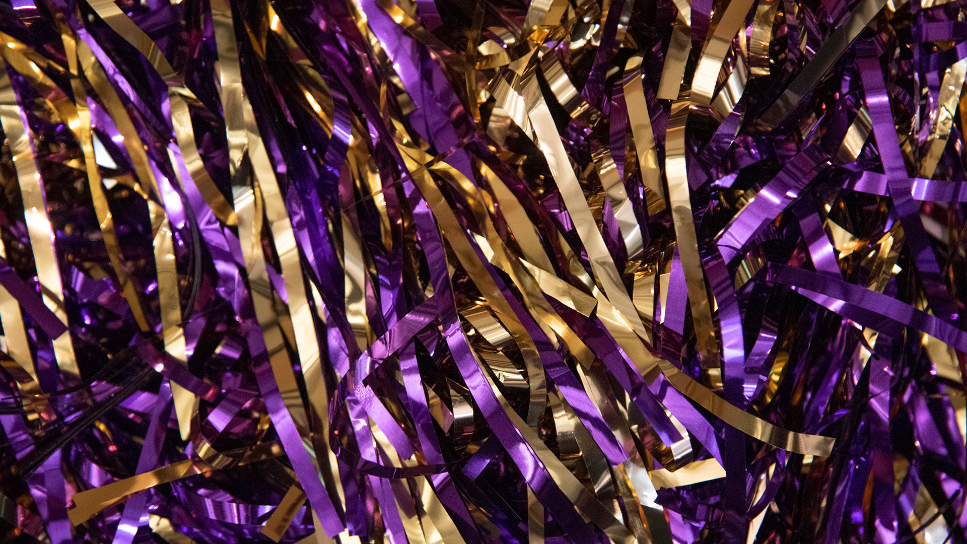 Purple and gold pom poms