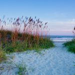 A white sand and grassy beach on the southern coast.