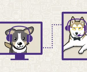 Two Huskies connecting online