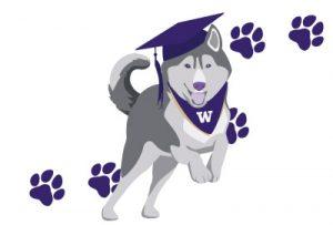 Running Husky with grad cap and bandana
