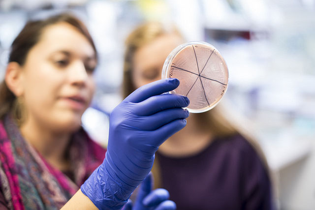 two women looking at petri dish