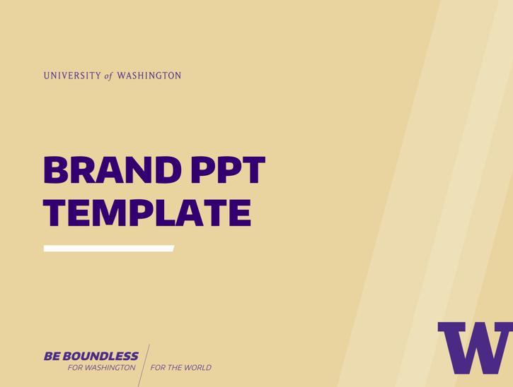 PPT_Template_CampaignSlash2