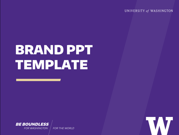 PPT_Template_CampaignSlash1-wPurple