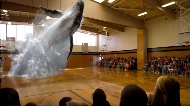 Tecnología 7D podría terminar con el encierro de los animales en los zoos.