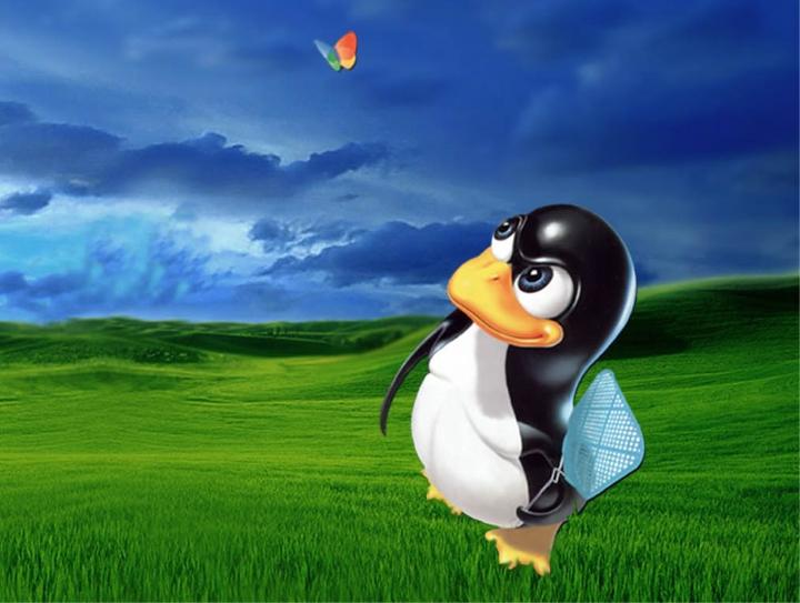 Linux superó el 5 por ciento del mercado… ¿y después bajó?