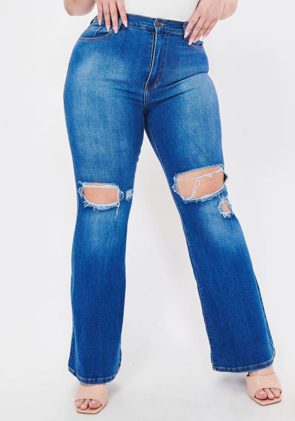 PLUS Day and Night Flare Jeans