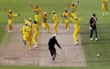 Top 10 Funniest Moments in Cricket History - HD  (UPDATED 2014)
