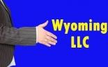 WY LLC