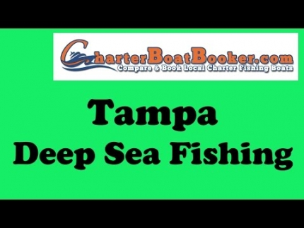 Tampa Deep Sea Fishing - Charter Boat Booker