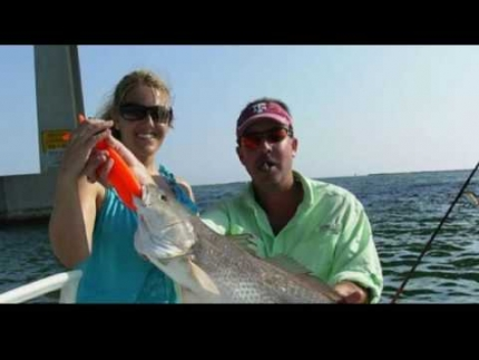 Tampa Deep Sea Fishing