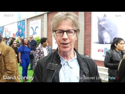 "Dana Carvey  at ""The Secret Life of Pets 2"""