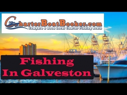 Fishing In Galveston - Charter Boat Booker