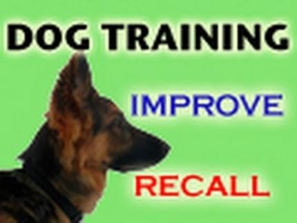 Tips to improve recall