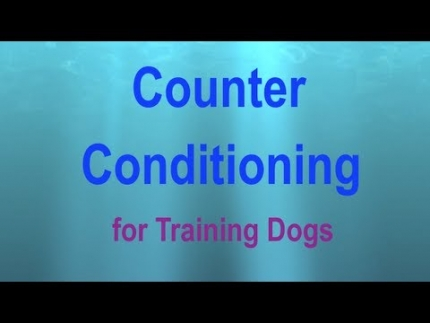 Counter conditioning: a visual presentation