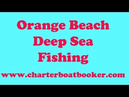 Orange Beach Deep Sea Fishing - Charter Boat Booker
