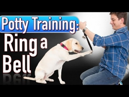 Potty training - ring a bell to be let out