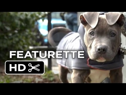 The Drop - Tom Hardy, James Gandolfini and a very cute pitbull puppy