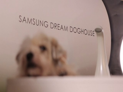 Crufts | Samsung dream doghouse