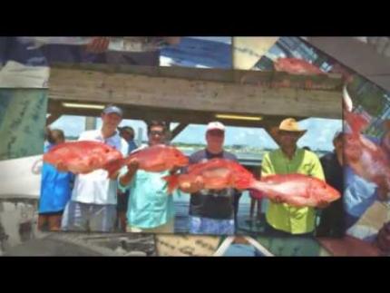 Orange Beach Charter Fishing