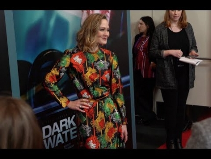 """Dark Waters"" premiere & arrivals world premiere"