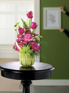 1800 Flowers Bay Ridge