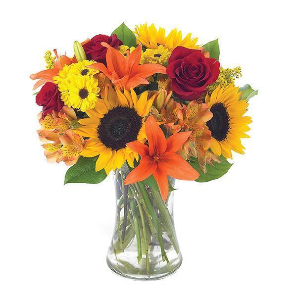 Conroys Flowers