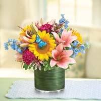 1800flowers Flowerama