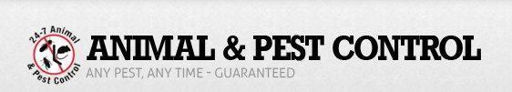 247 Animal Pest Control