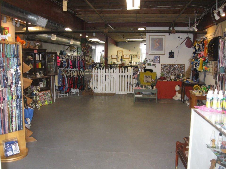 A Classic Clip Plus Pet Grooming Boutique