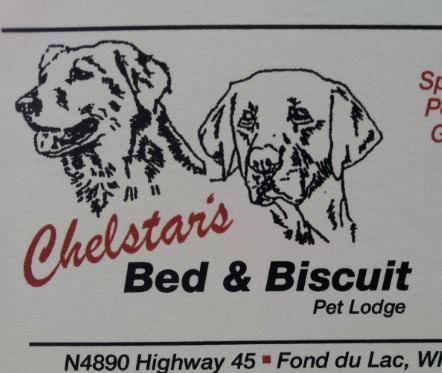 Chelstars Bed Biscuit Pet Lodge