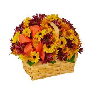 Harkers Flowers