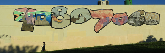 Mural struggle cape town
