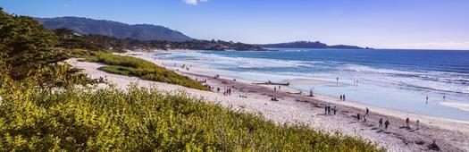Carmel beach crop
