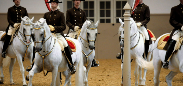 US cavalry unit commemorates Gen. Patton's order to save hundreds of Lipizzaner Stallions from being eaten by Soviets