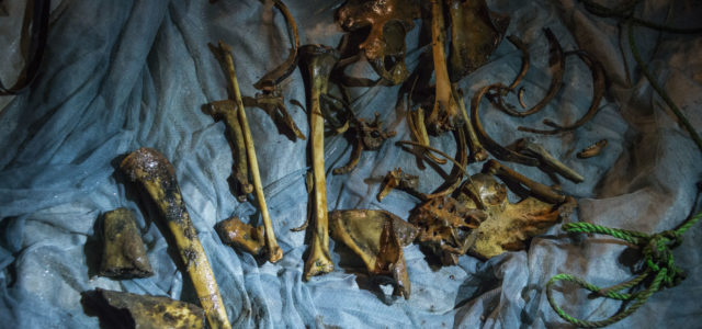 Hundreds of Dead Bodies Rot in Bangui Wells