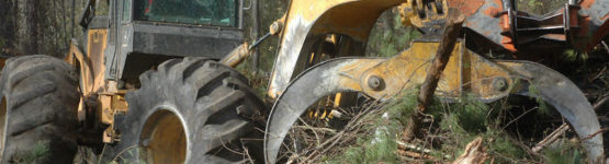 Land Clearing Debris