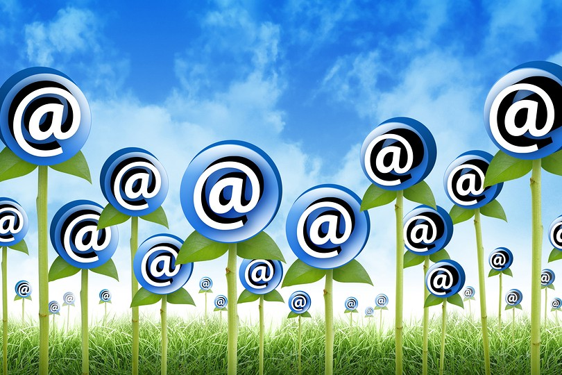 Email Flowers are sprouting for a internet, newsletter inbox contact theme. The flowers have an @ symbol to signify an email address. Also use it for a spam or marketing concept
