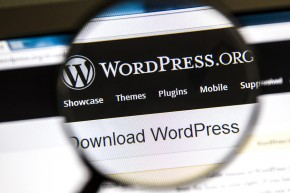 Ostersund, Sweden - August 3, 2014: Close up of WordPress websit