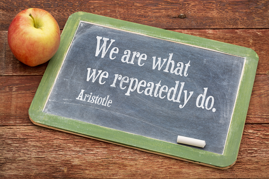 We are what we do - Aristotle quote on a slate blackboard agains