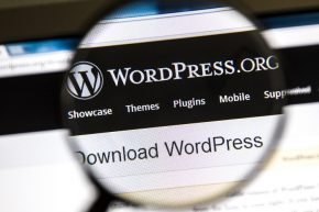 WordPress Plugins Image