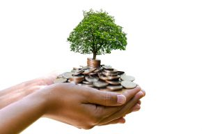 Tree Growing in Money Soil - Business Growth Concept