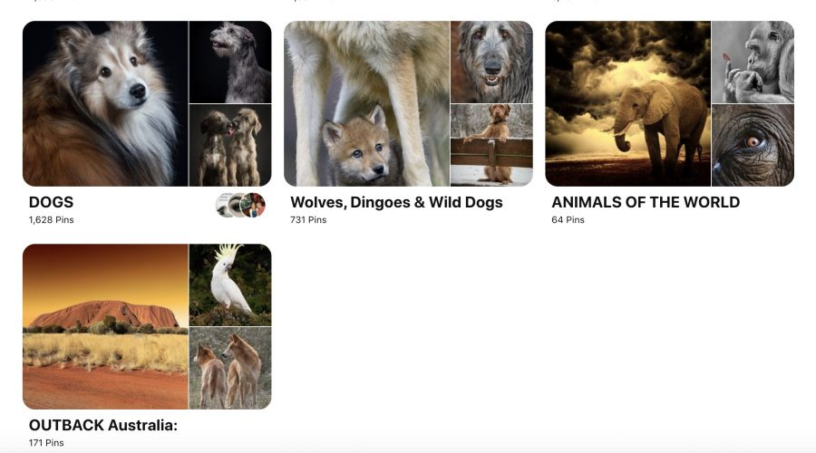 An example of a Pinterest profile