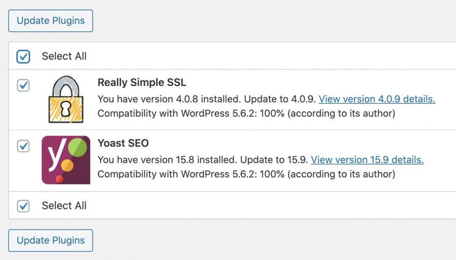 The WordPress Update Plugins Page