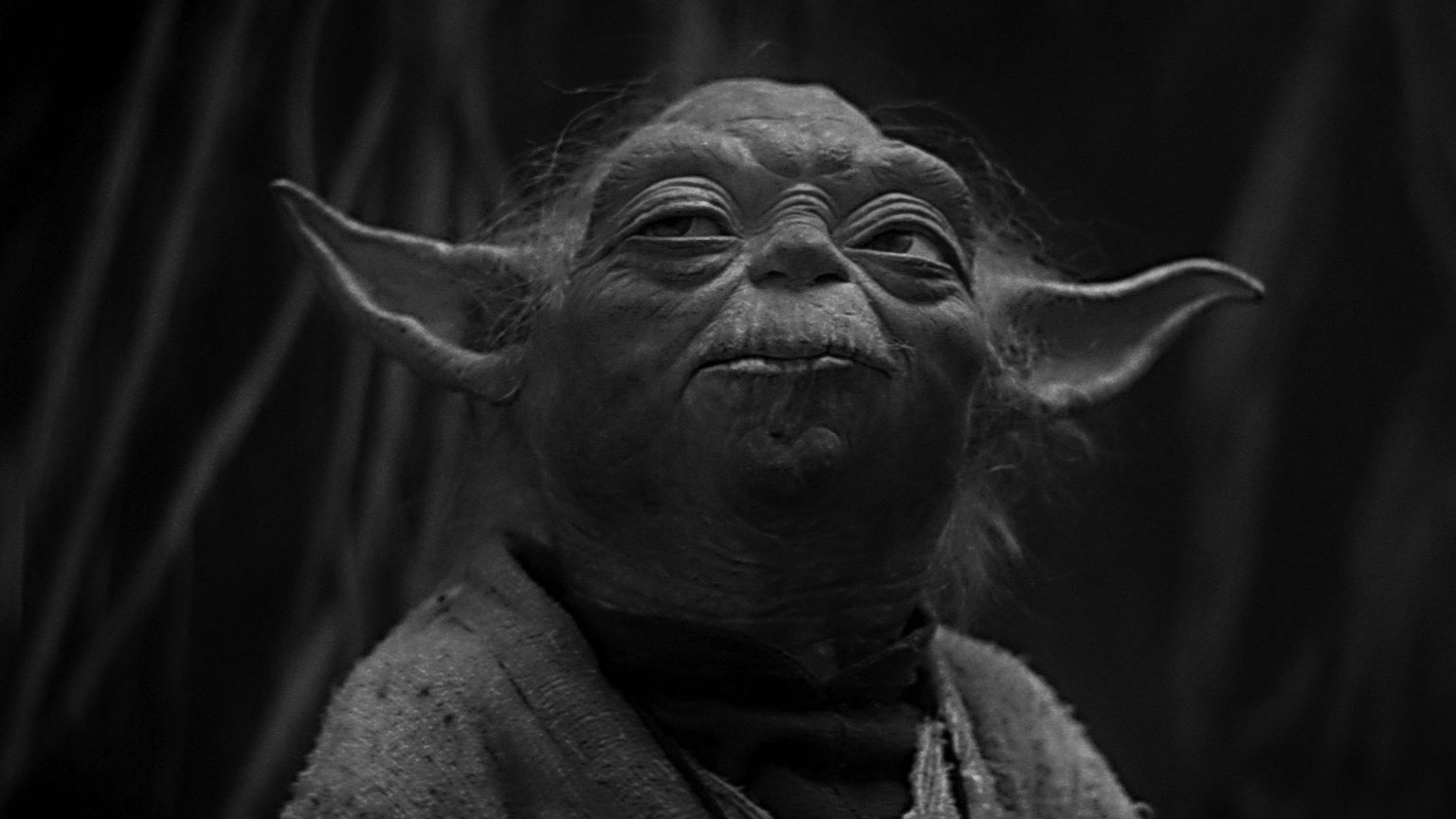The Yoda of Sparring