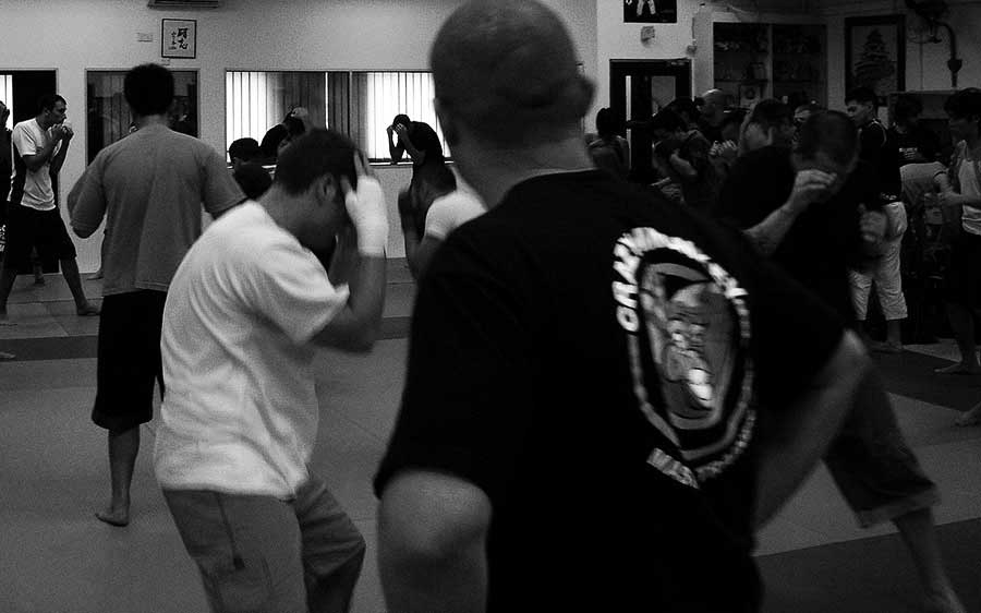 What's Your View of the Martial Arts Experience?