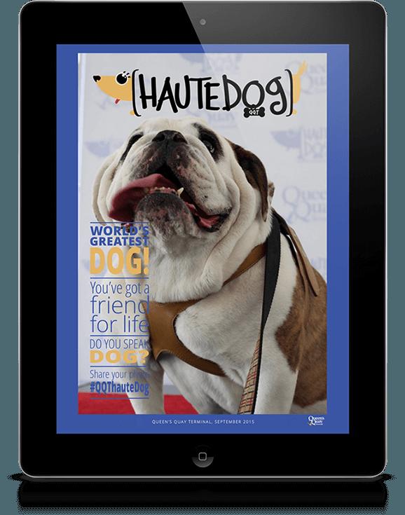 haute dog 1