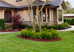 Lawn care anchorage alaska