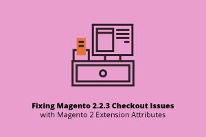 Magento 2.2.3 checkout issue