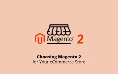 Choosing Magento 2 Version for Your eCommerce Store